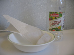 Vinegar vs. Bathroom Grime