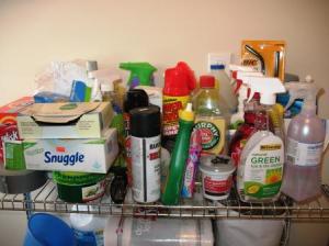 Insane Goals: Organizing the Mud Room