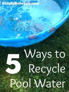 5 Ways to Recycle Pool Water - Are you daring enough to try number 5?