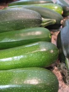7 Ways to Survive the Zucchini Flood
