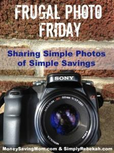Frugal Photo Friday