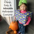 DIY Cheap Easy Birthday Present Halloween Costume
