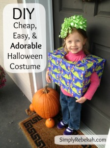 DIY Cheap, Easy, and Adorable Birthday Present Halloween Costume