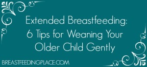 Extended Breastfeeding: Weaning My Daughter Gently