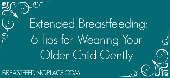 Extended Breastfeeding 6 Tips for Weaning Your Older Child Gently