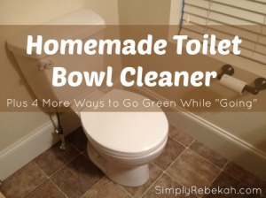 "5 Ways to Go Green While ""Going"" {including homemade toilet bowl cleaner}"
