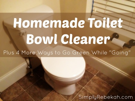 "Homemade Toilet Bowl Cleaner - Plus 4 More Ways to Go Green While ""Going"""