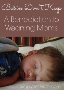 Babies Don't Keep: A Benediction to Weaning Moms