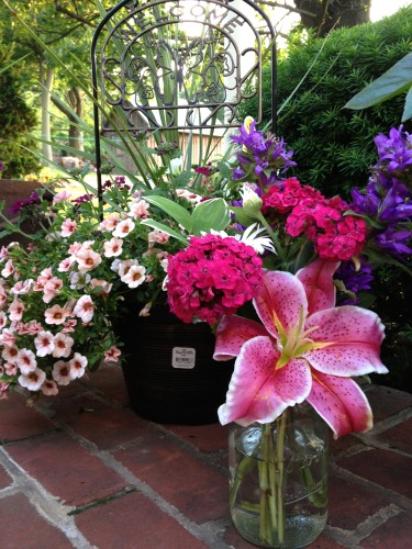 Housewarming Gift - Flowers