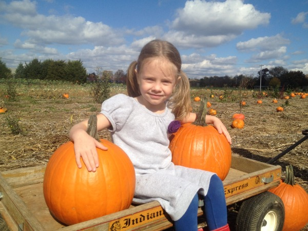 pumpkin patch - Grace