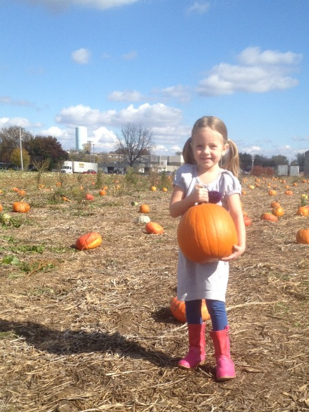 pumpkin patch - grace's pumpkin