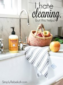 I Hate Cleaning, But This Helps . . . (Free Cleaning Kit)