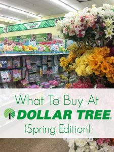 What to Buy at Dollar Tree: Spring Edition