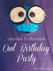 Adorable and Affordable Owl Birthday Party